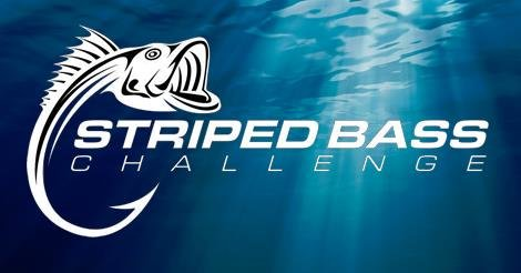 Striped Bass Challenge